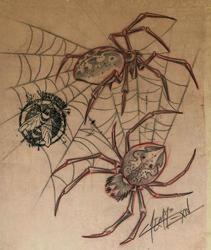 occas spider